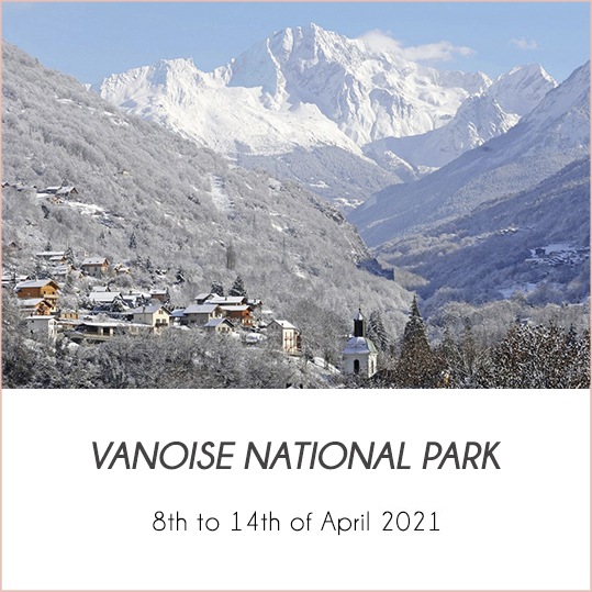 ski-mountaineering-in-the-vanoise-national-park